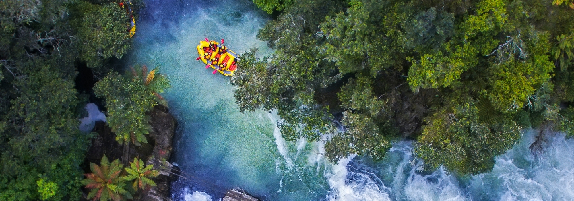 Largest international conference to be hosted in Rotorua