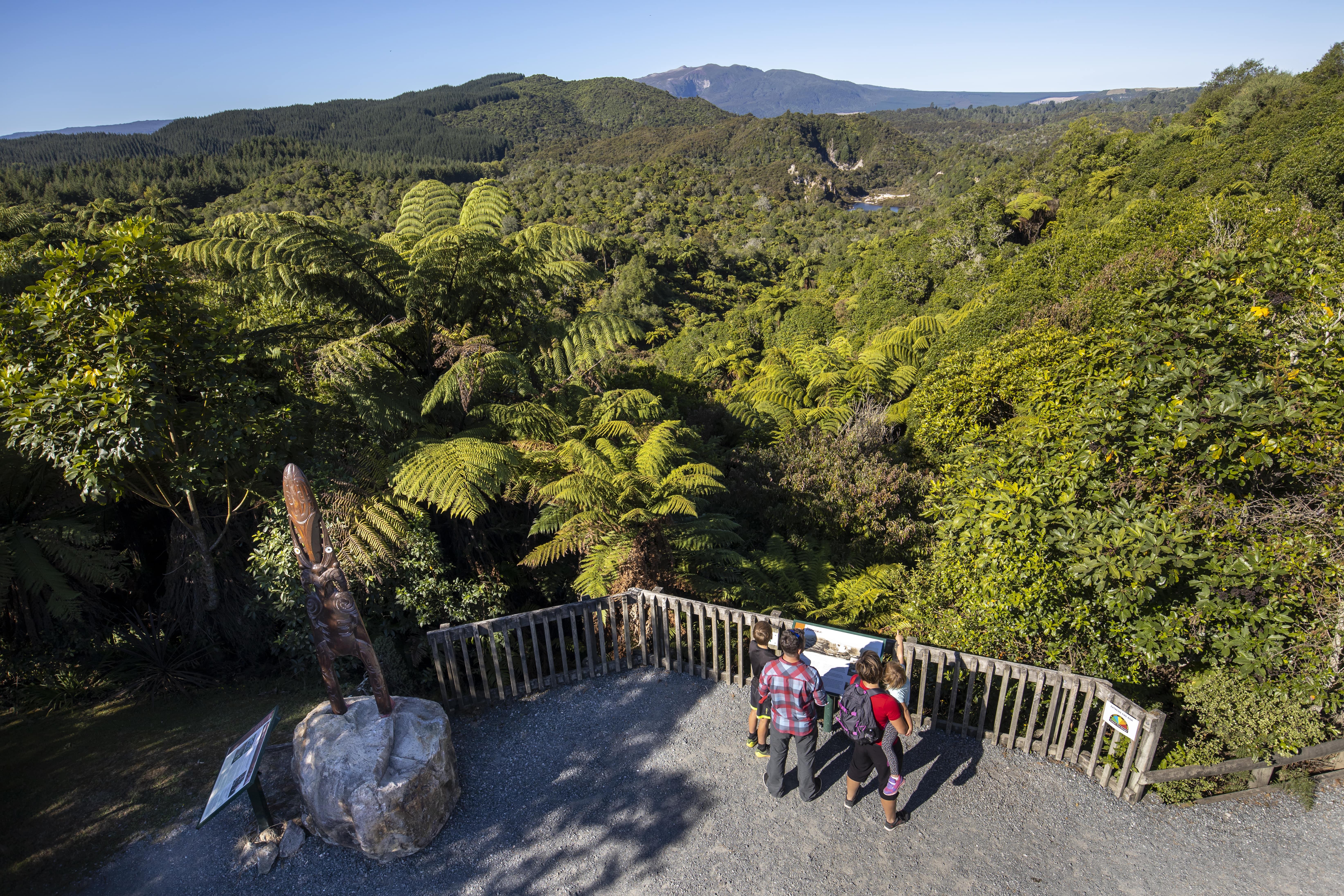 Ten wonderful walks in Rotorua